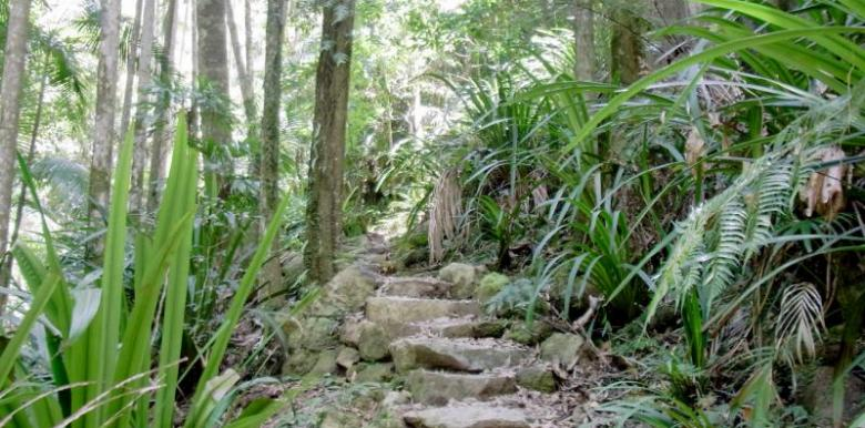 Byron Bay Adventure Tours: Big Day Out - Hinterland