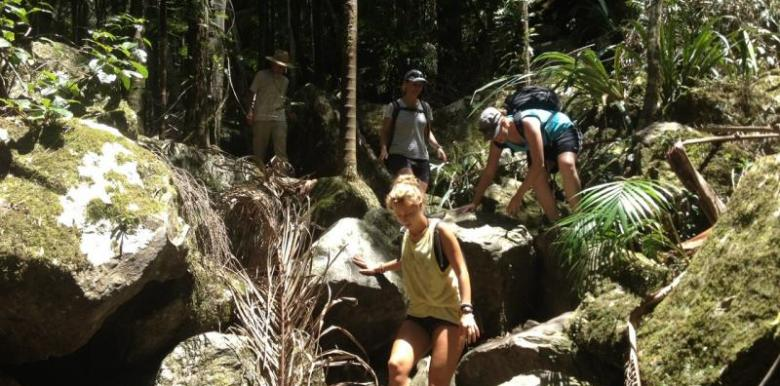 Byron Bay Adventure Tours: Earth To Surf Adventure