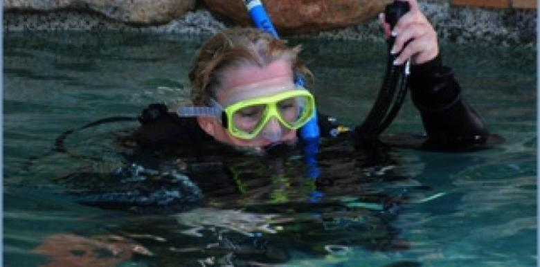 Pleasure Divers: 3 day PADI Open Water Course