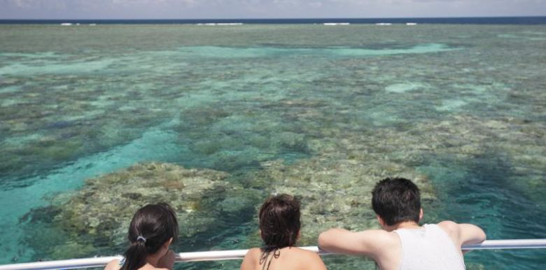 Calypso Reef Charters: 1 day Snorkel Trip - Snorkel and Dive vessel