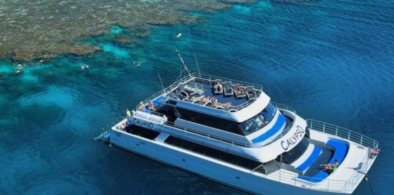 Calypso Reef Charters: 1 day Snorkel Trip + 2 Certified dives (Tanks & Weight Hire only)
