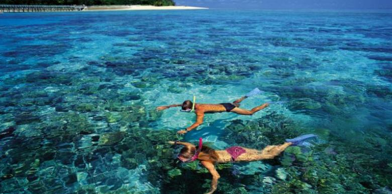 Big Cat Green Island Reef Cruises: Green Island Half Day + Skyrail Combo (C1)
