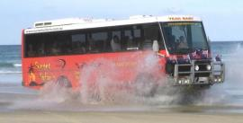 CroppedImage270137-4f701eb32fc0e_447_austin-bus-splash