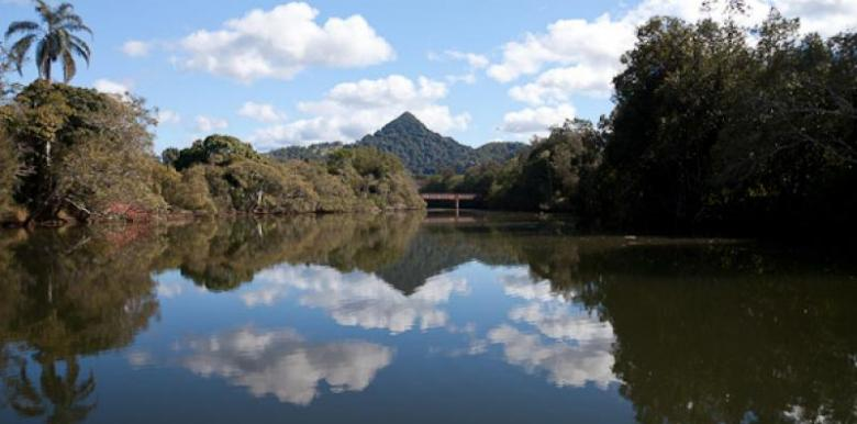 Byron Bay Eco Cruises & Kayaks: Scenic Eco Cruise - COFFEE, CAKE & CULTURE