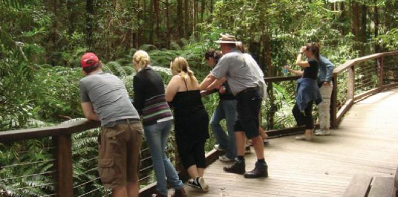 The Discovery Group: 1 day Fraser Island 'Warrior' Tour